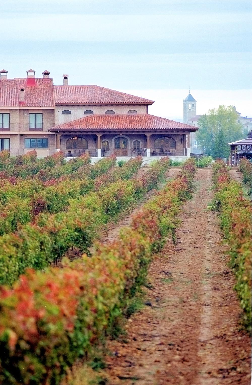 vinos-tudanca